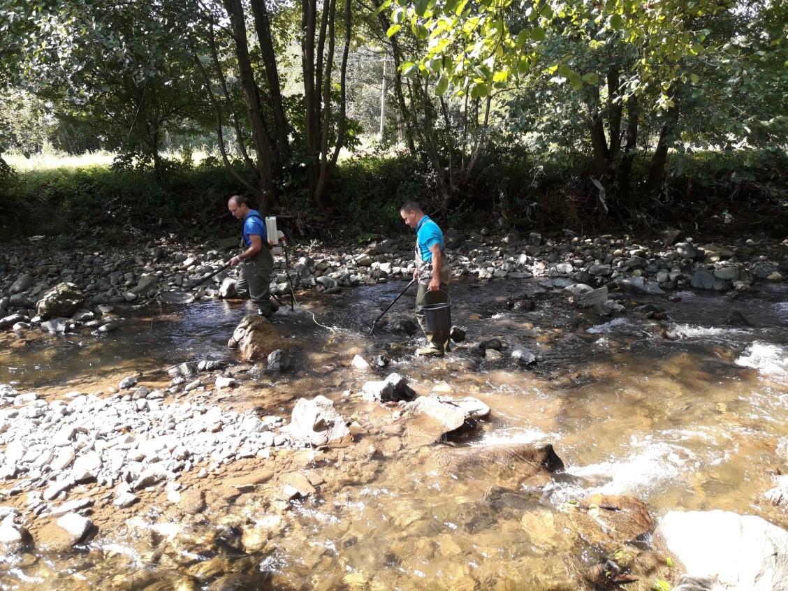 Reka Jošanica sl.2
